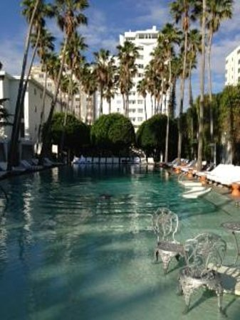 Delano South Beach:                   Pool