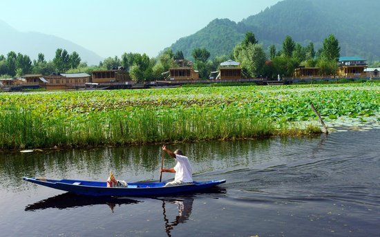 Photo of Royal Group of Houseboats Srinagar