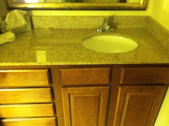 Staybridge Suites Madison East: Bathroom sink