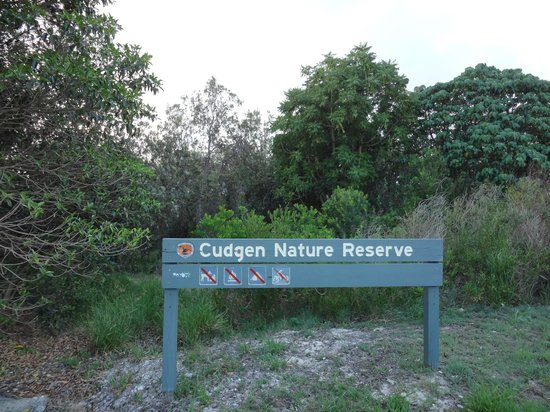 Bogangar, Australia:                   Interesting coastal vegetation walks