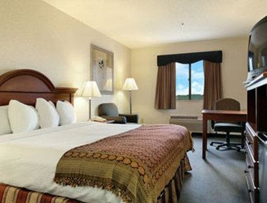Baymont Inn & Suites Rochelle: Standard Queen Bed Room