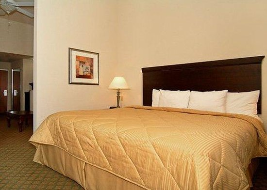 Comfort Inn & Suites Fort Myers: Guest Room