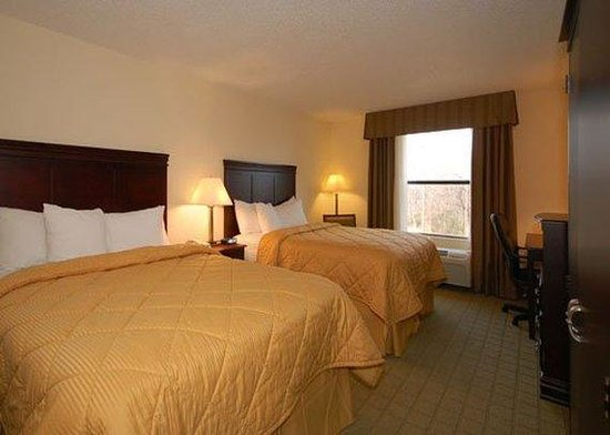 Comfort Inn & Suites Lake Texoma: Guest Room