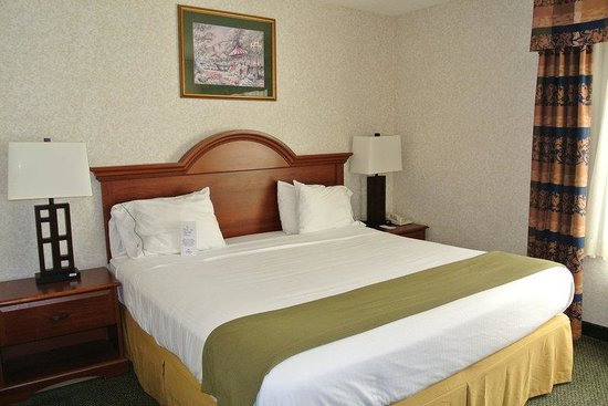 Holiday Inn Express Dahlgren: King Bed Guest Room