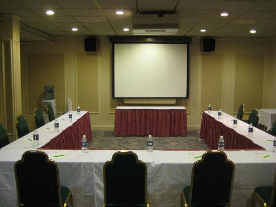 Madison Suites Hotel: Meeting Room