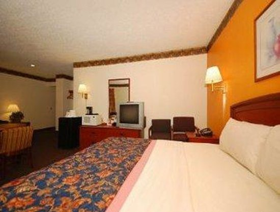 Super 8 Greensboro Coliseum: Standard 1 King Bedroom