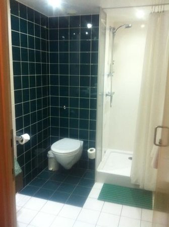 Comfort Inn Vauxhall: toilet