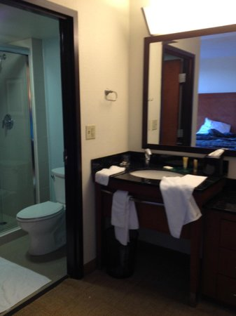 Hyatt Place Busch Gardens: vanity/bathroom area - bed in mirror