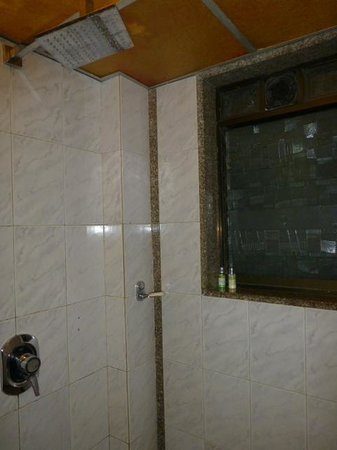 Hotel Regal Enclave: shower