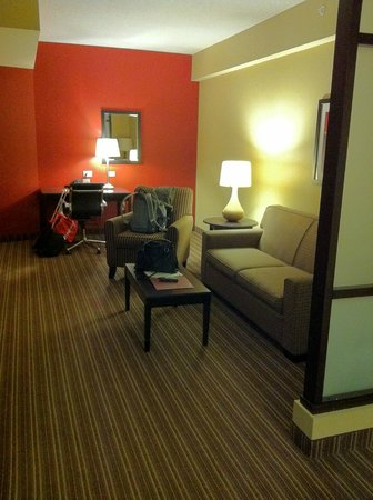 Comfort Suites West of the Ashley:                                     Very room living room