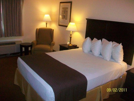 BEST WESTERN Kansas City Inn: Guest Room