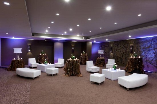 Radisson Hotel Guatemala City: Meeting Room