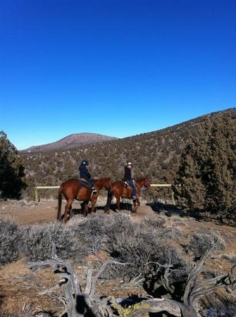 Brasada Ranch:                   horse riding