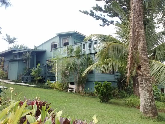 Kohala Country Adventures Guesthouse