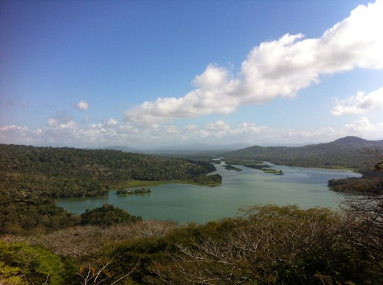 Gamboa Rainforest Resort:                   View from the observation tower