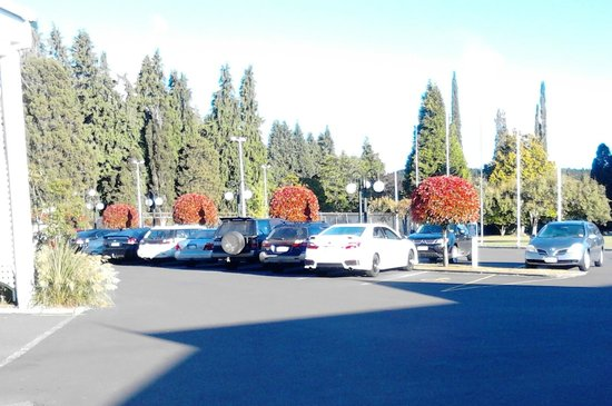 Wairakei Resort Taupo:                                     Carpark at front looking towards the tennis court