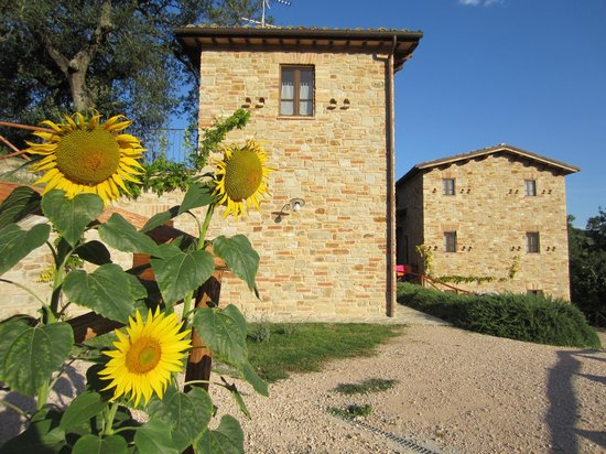 Agriturismo Ramuse'