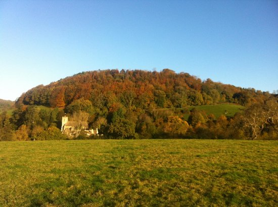 Uley, UK:                                     Fall view