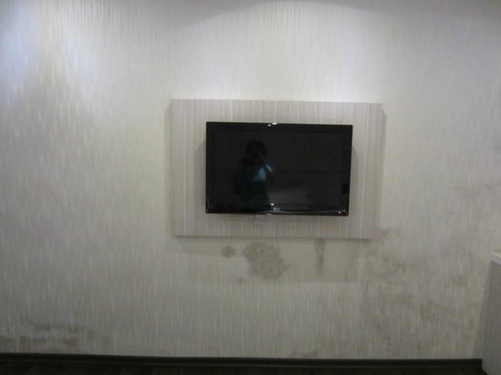 Venus Boutique Hotel: LCD TV with dampy wall