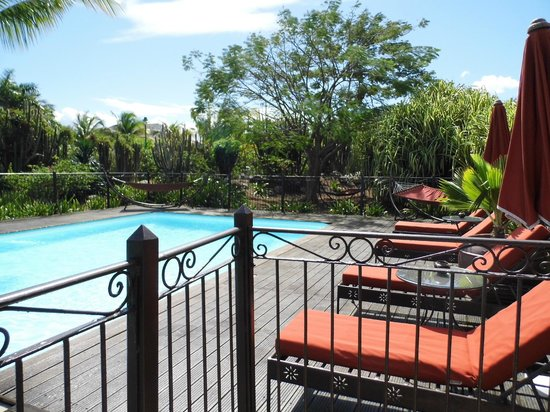 Palm Court Hotel:                   Pool