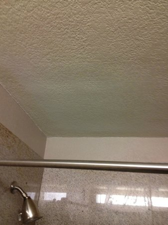 The Hotel Acadiana:                   The shower water bubbly