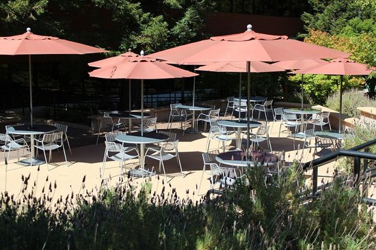 Scotts Valley, CA: patio