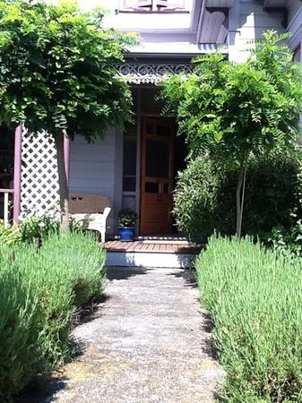 Fernview Cottage Bed & Breakfast:                   lovely pathway surrounded by lavender