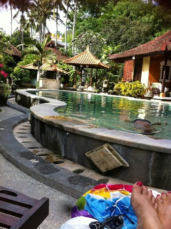 Padangbai Beach Homestay: pool