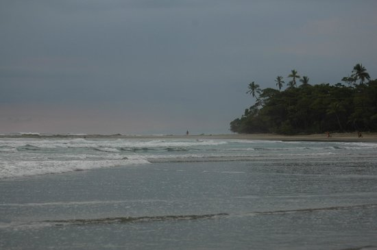 Blue Surf Sanctuary: One of the most beautiful beaches in the world!