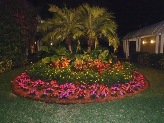 Ramada Inn of Naples :                                     Landscaping