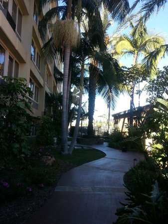 Ayres Inn Orange / Disneyland: Walk way towards pool area