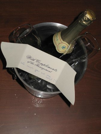Casa Delfino Hotel & Spa:                   congratulations from staff on engagement