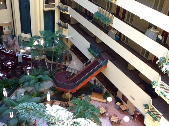 Embassy Suites Hotel Tampa-USF/Near Busch Gardens:                   Rooms are on four sides of a huge green-filled atrium