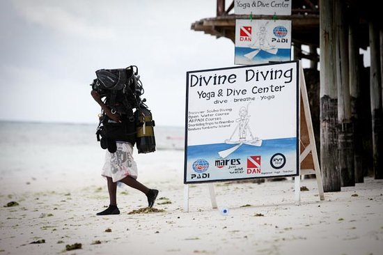 Divine Diving, Yoga & Dive Center