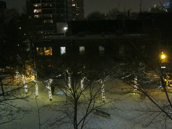 Downtown Home Inn:                   View from the Camilla Room of opposite park at night