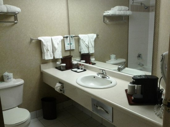 Ramada Plaza Toronto Airport Hotel & Stage West Theatre: Bathroom