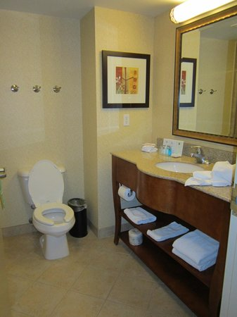 Hampton Inn & Suites by Hilton Kitchener:                   Bathroom