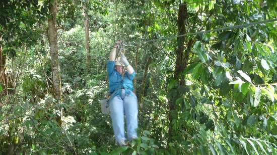 Jinetes de Osa Hotel:                   Zip line