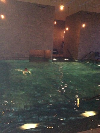 Stouby, Dania:                   Large indoor pool