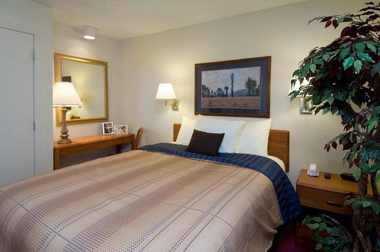 Candlewood Suites - Rogers: One Bedroom Suite - Seperate Sleeping Quarters