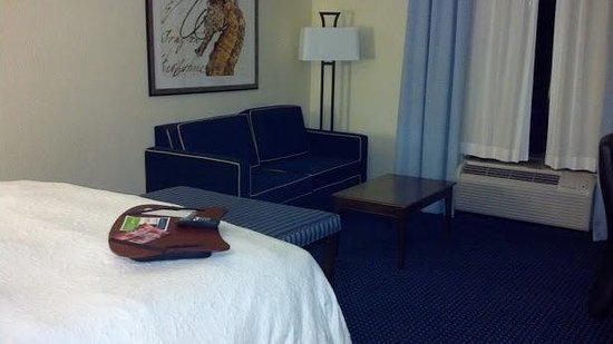 Hampton Inn & Suites Orlando-Apopka:                   clean, quiet, well-appointed room