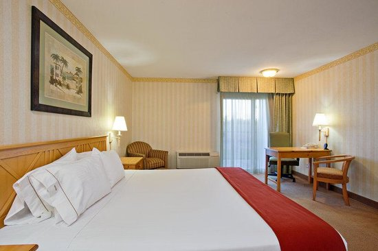 Holiday Inn Express Camarillo: Guest Room