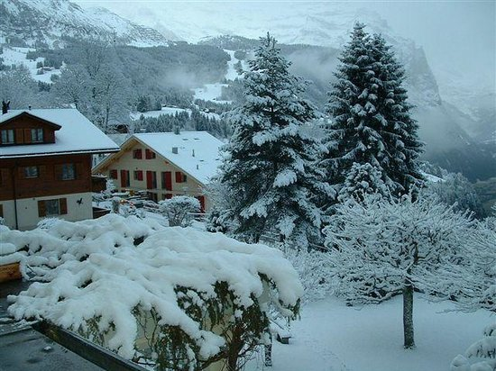 Hotel Wengener Hof:                   Fresh snow in the morning