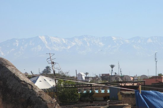 Riad Camilia:                   View of the Atlas mountains on the roof deck