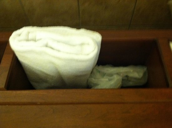 Hyatt Regency Rochester:                   Garbage behind towels