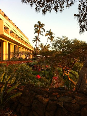 grounds at dusk, Mauna Kea Beach Hotel