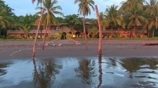 Delfin Beachfront Resort:                   The front of the hotel at sunset
