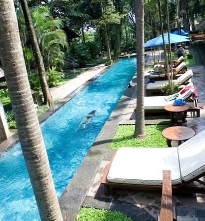 Hotel Novotel Bogor Golf Resort and Convention Center: Swimming pool