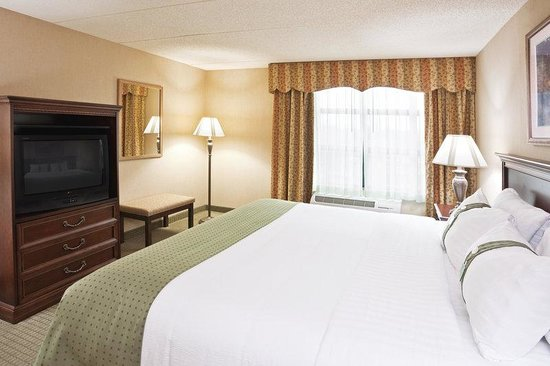 Holiday Inn Hotel &amp; Suites Ann Arbor Univ. Michigan Area: King Bed Guest Room