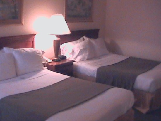 Holiday Inn Express: Double Bed Guest Room